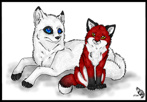 Foxy and Shiloh by The-F0X