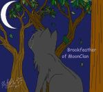 Brookfeather of MoonClan by insanityNothing