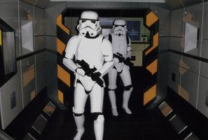 Stormtroopers on Patrol by masimage