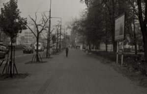 I walk this lonely road by Molot