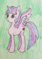 Princess Twilight Sparkle by Punisher2006