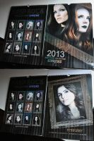 Calendar 2013 by perlaque