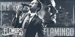 Brandon Flowers - Flamingo by Farkwind