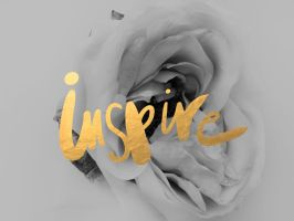 inspire by cocorie