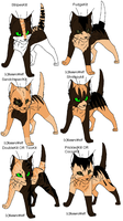 Warrior Cat Adoptables 30-OPEN by Shadowpaw909