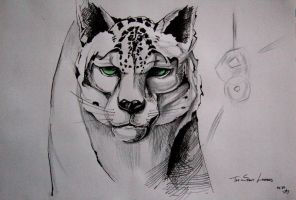 The Snowy Leopard by pauscorpi