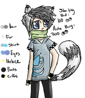 Racoon Adopt :: Male by xHalfaLife101x