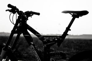 Silhouette - BW by Egg-Salad