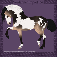 Nordanner Import 1061 by SWC-arpg