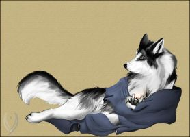 Husky furry love by Pioe
