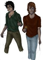 DH Harry Ron v2 by MioneBookworm