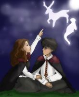 Harry and Hermione - happiness by rjade829