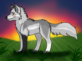 AT: Black9612wolf by Tiegan5
