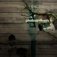 photosynthesis by haaru