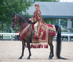 Red Arabian Costume Stock 1 by Synyster-Stock