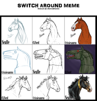 Switch Around Meme by sealle