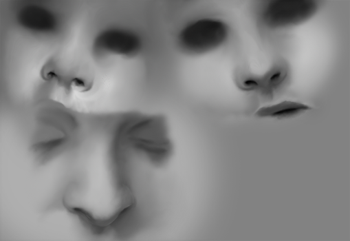 Realism Digital Painting number 2: Noses by Dex91