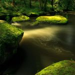 dark river V by indojo