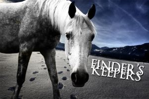 Finder's Keepers by starredandsniped