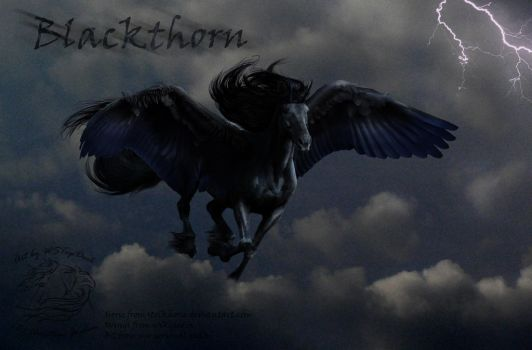 Blackthorn contest entry by WSTopDeck