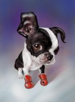 Boxing Boston Terrier PS by nosoart