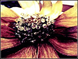 Jewelry Flower by WillTC