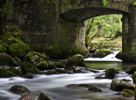 Dartmoor Stream by shred2201