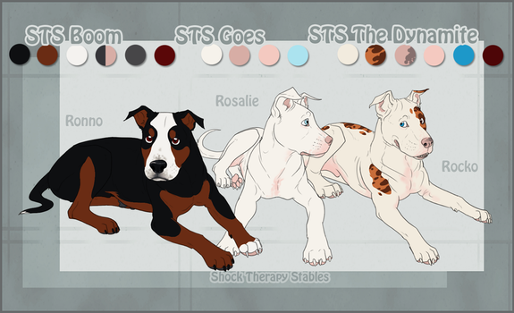 STS Dog- Ronno, Rocko and Rosy by ShockTherapyStables