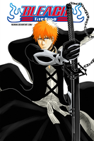 BLEACH: The Death and the Strawberry by NeoRuki