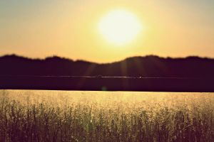 The beauty of the sun. by AnSophia
