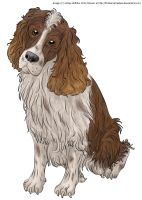 Spaniel Lineart-Colored by BrokenRemedies