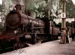 Train going on the road by Linnea-Rose