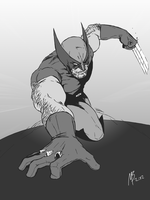 Wolverine by sunstarter
