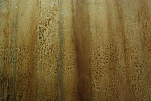 Wood Texture-Stock by Thorvold-Stock