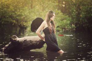 Black Swan lake by bwaworga