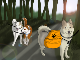 Young Love on a Hike - Dog Hiking Entry by xMush-Kennelsx