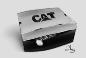 Cat in a box :) by mary3m
