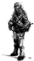 Wookiee Warrior by Jorrigun