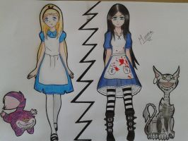 Alice in Wonderland/Alice Madness Returns by Catanzy