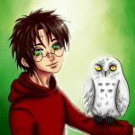 Harry and Hedwig by Enide-Kant