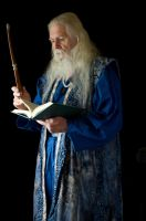 2014-08-01 Wizard Blue 10 by skydancer-stock