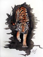 Watercolor Tiger by Marcynuk