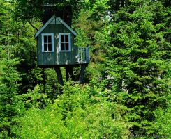 For Sale...Room with a view by imonline