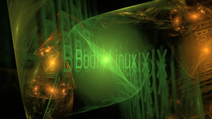 Bodhi Linux Wall by Theophobus