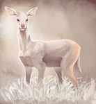 The Holiest Deer by dragon-shark