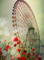 Ferris wheel in the garden by yumi71