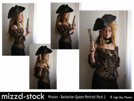 Pirates - Barbarian Queen Portrait Pack 2 by mizzd-stock