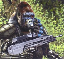 Silverback by ChrisQuilliams