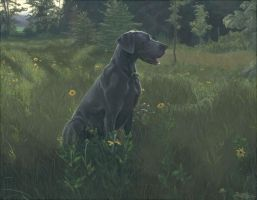 Anfield the Great Dane by oogalaboo