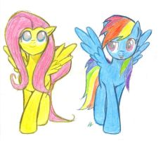 fluttershy and rainbowdash by small3907